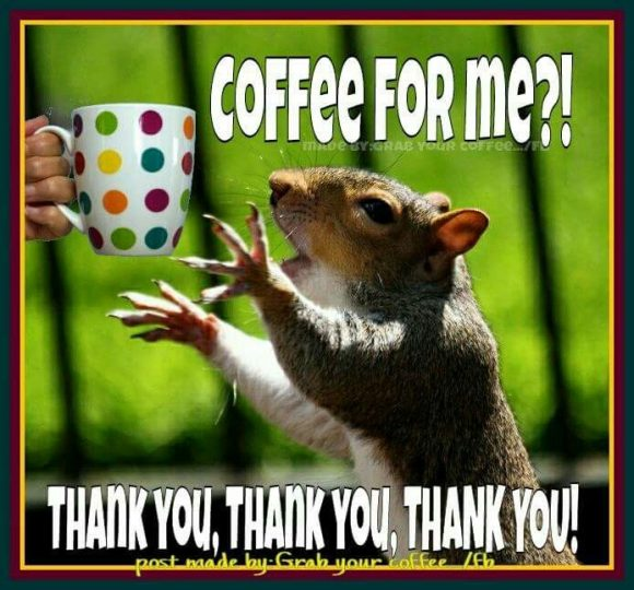 Resultado de imagen para made by:grab your coffee wednesday