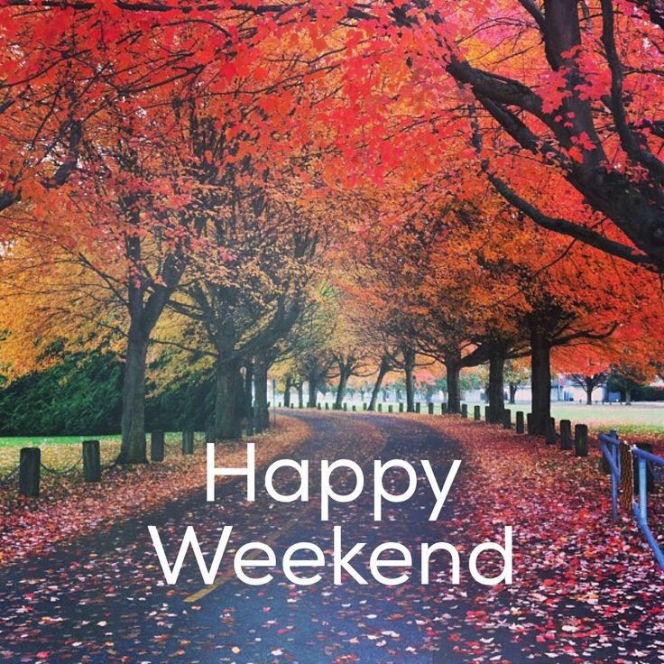 May Your Weekend Be Filled with Family and Fun! -  CelebrateEverydayBlogCelebrateEverydayBlog